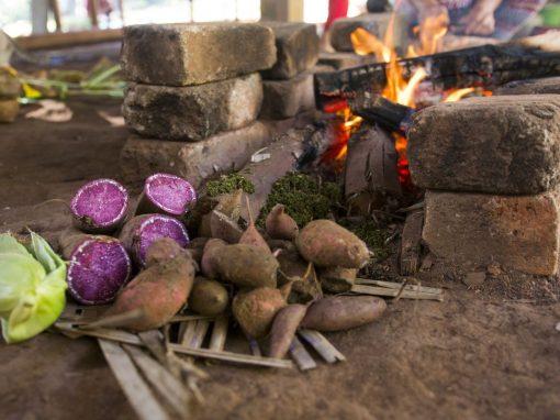 Apreciação de comida tradicional